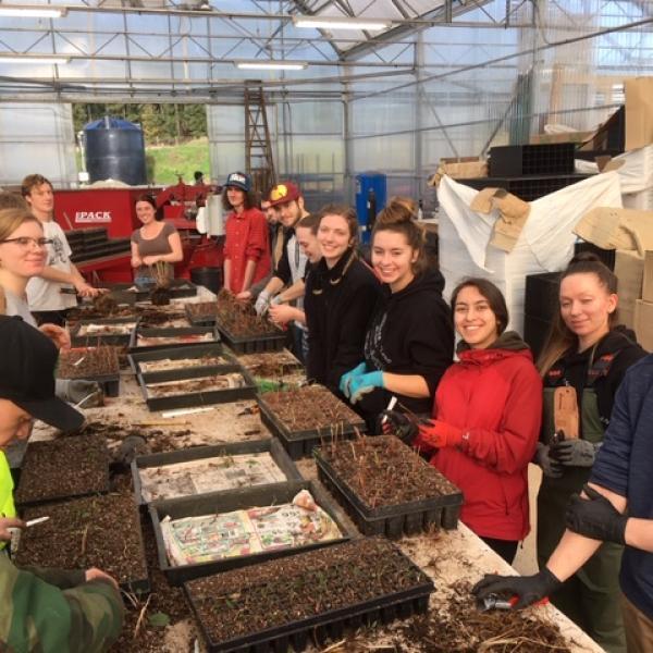 VIU Horticulture, Vancouver Island University, Horticulture, VIU, Green Thumb Nursery