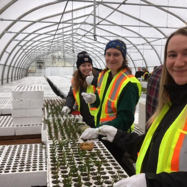 VIU Horticulture, Vancouver Island University, Horticulture, VIU, Sylvan Vale Nursery