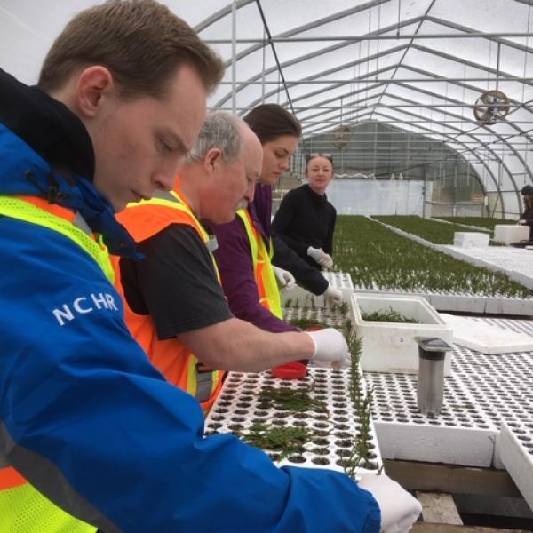 VIU Horticulture, Vancouver Island University, Horticulture, VIU, Sylvan Vale